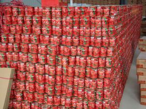 tomate paste veder supplies tomato